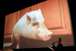 On a theater screen, a pink pig props himself up on his front legs. In the foreground is a man holding a microphone to his face. Because of the way both are facing each other, it looks like they are having a live conversation.