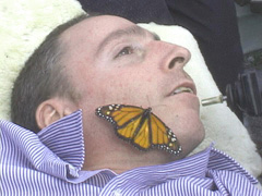 A man lies his head on a bed, gazing off camera, while an orange butterfly sits on his cheek.