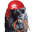 Guest Blog: The Lion and the Pirate: A Community
