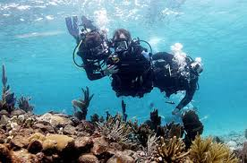 Shot underwater, a trio of scuba divers swims above a reef formation. One of the divers adjusts the equipment of another, who has no arms or legs.